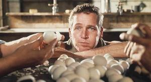 علماء: بيض الدجاج يق