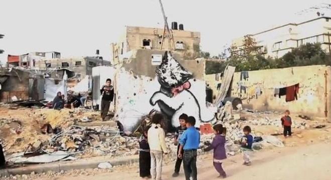 القطة التي اثارت إعجاب الجمهور على خلفية أطلال غزة