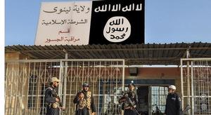 أحد مسلحي  داعش : قط
