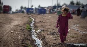 العراق.. الصليب الأح