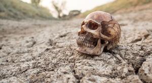 اكتشاف جمجمة بشرية ع