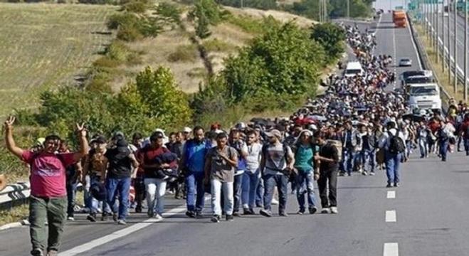 لاجئون سوريون في طريقهم إلى القارة العجوز