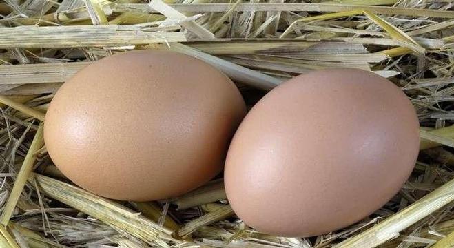 بيضتين