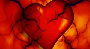 علماء ألمان: القلب ي